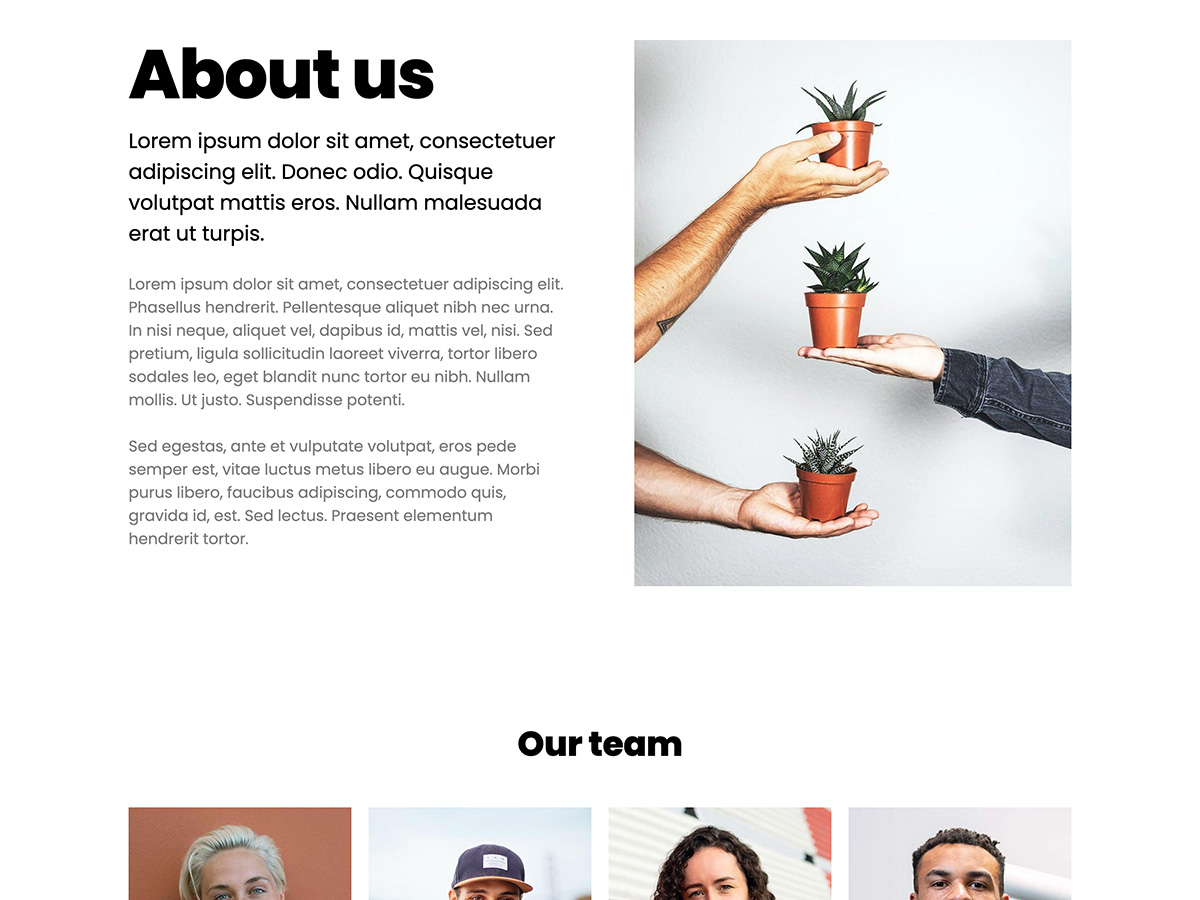 Sprout Makeswift business template about company and team