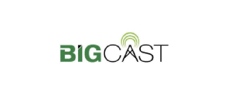 Bigcast